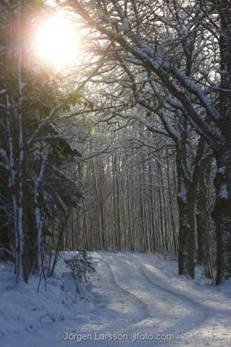 Väg vinter sol Mörkl Södermanland