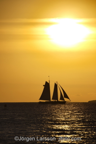 Key West Florida USA  Sunset sailboat