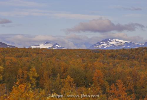 Lappland Riksgränsen Höst Fjäll