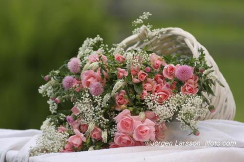 Rosa Rosor vit korg