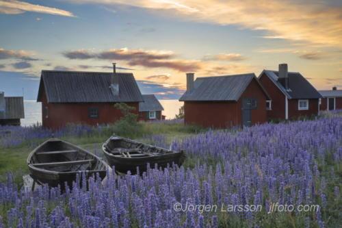 Blåeld Nyhamn Gotland Sweden