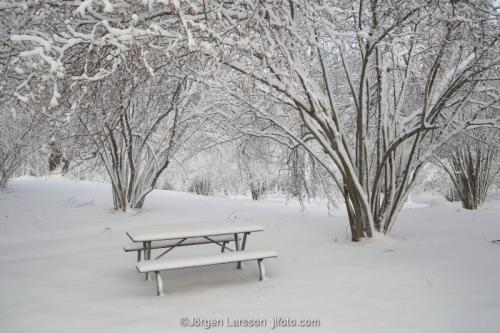 Winterlandscape Sofa snow Sodermanland Sweden