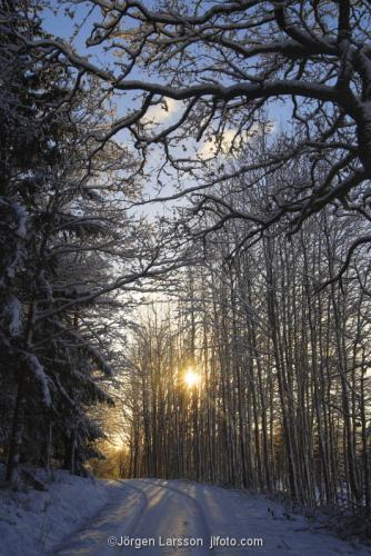 Vinterväg Mörkö vinter Södermanland Sverige