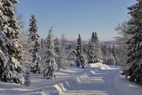 Härjedalen vinter Sverige  Väg vinterväg snö hus