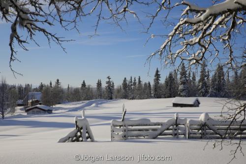 Härjedalen vinter Sverige  Fäbod kyla snö