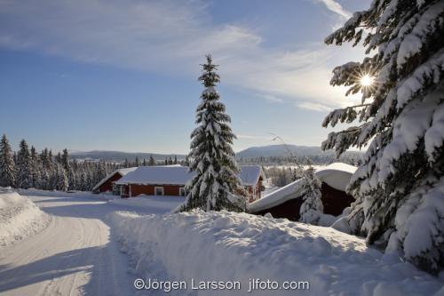 Härjedalen vinter Sverige Väg Hus kyla snö