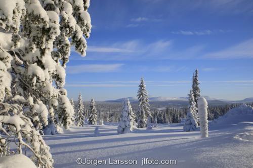 Härjedalen vinter Sverige  Fjäll snö