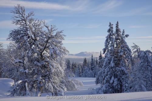Härjedalen vinter Sverige  Fjäll kallt snö