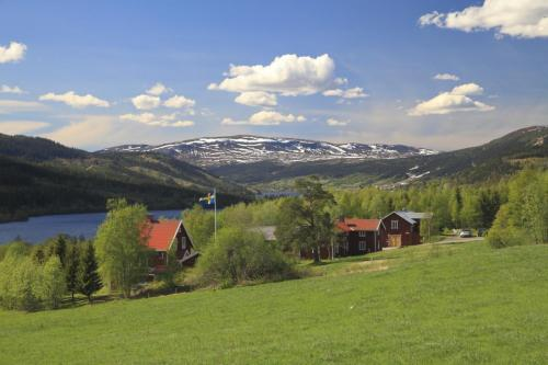 Swedish landscapes