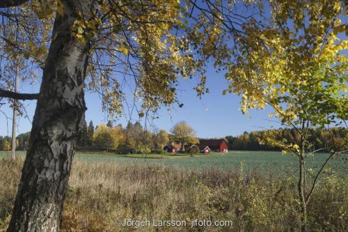 Grödinge Södermanland Sverige  Bondgård höst