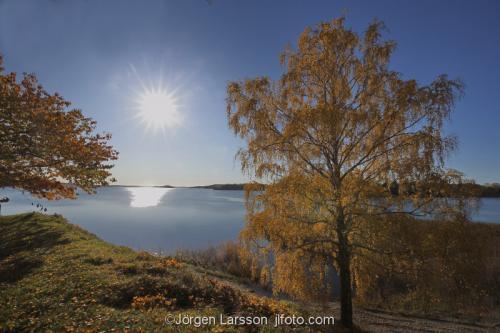 Skansundet Grödinge höst sol vatten träd kust Sverige