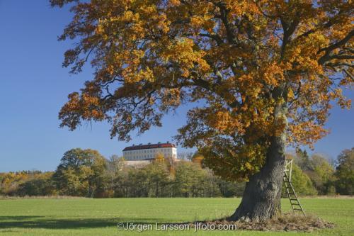 Horningsholms castle Sodermanland Sweden autumnlandscape