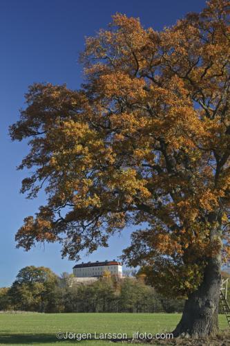 Horningsholm castle Sodermanland Sweden autumnlandscape