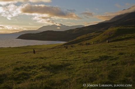 Akureyri Island