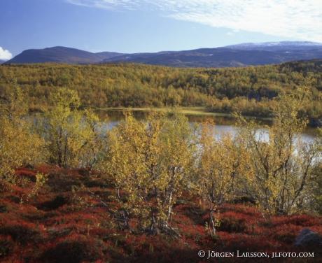 Kuokkel Lappland
