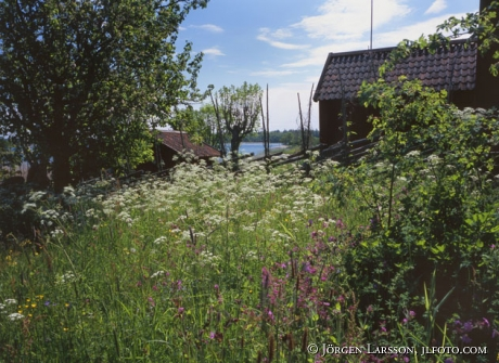 Ängsö Nationalpark Uppland