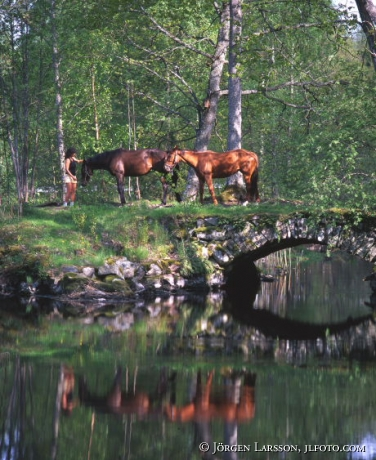 Kvinna med hästar vid Stenbro Hävla Östergötland