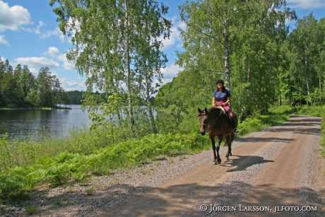Rider at lake Flaten Ostergotland Sweden