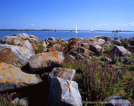 Sailboats Smaland Sweden