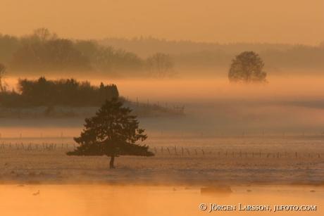 Soldis Mörkö Södermanland vinter