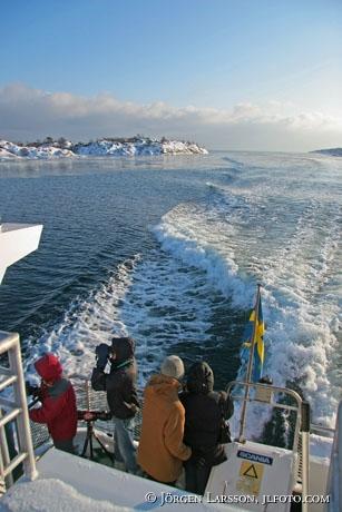 Boat Landsort Sweden