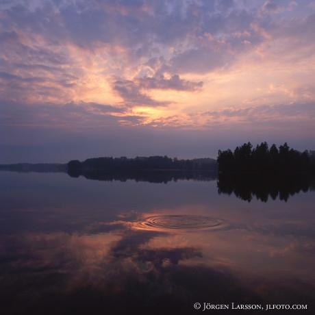 Vibjorken Sodermanland Sweden