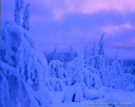 Lofsdalen Harjedalen Sweden