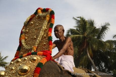 Elefantparad Kerala Indien