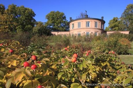Rosendals trädgård Djurgården Stockholm