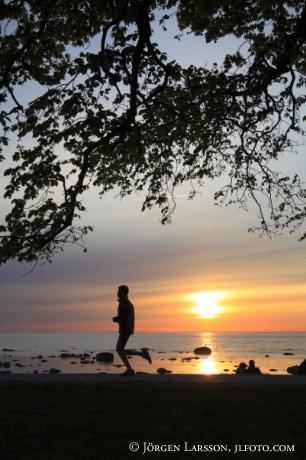 Solnedgång löpare Gotland