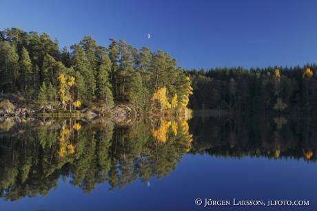 Lockvattnet nära Björnlunda Södermanland Sverige