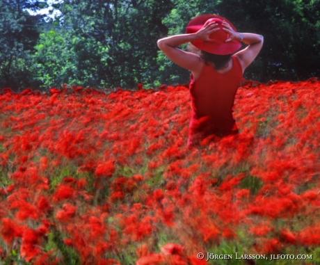 Kvinna i Vallmofält sommar