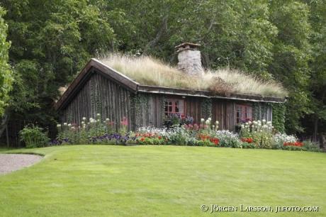 Stuga vid Soliden Öland Sverige