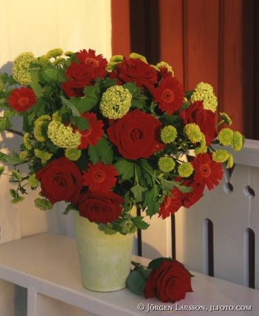 Röda rosor på veranda