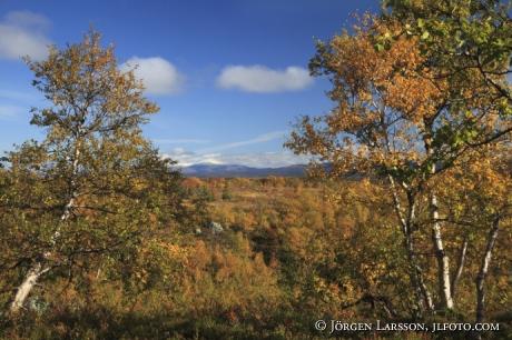 Snasahögarna Jämtland Sverige